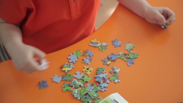 boy collects a puzzle
