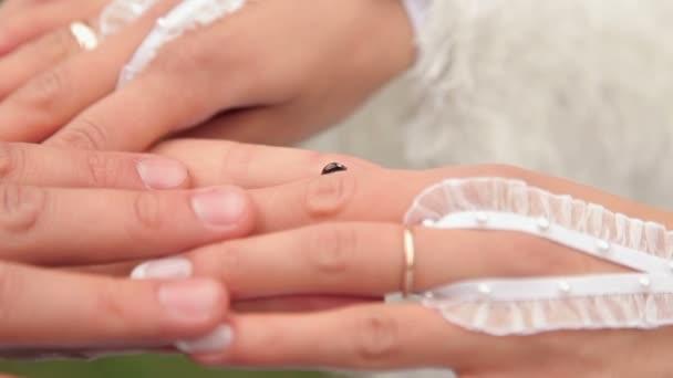 a menyasszony és a vőlegény kezét