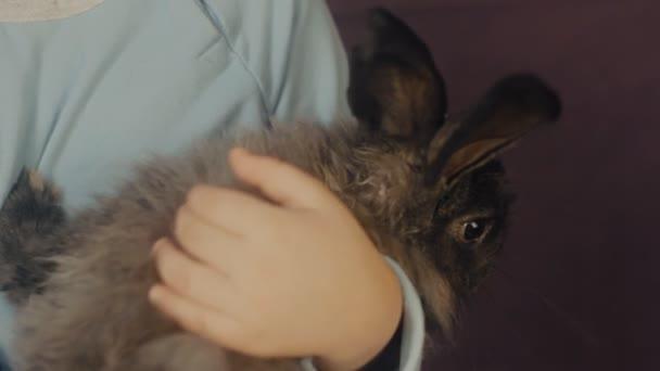 Bambina che abbraccia un coniglietto lanuginoso