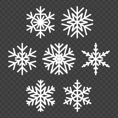 Winter Snowflake icon set. Snowflake collection isolated on transparent background. Christmas snow flake concept. Illustration in flat style. icon
