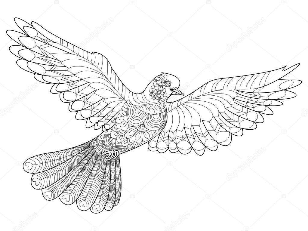 Yetişkinler Için Vektör Boyama Güvercin Stok Vektör
