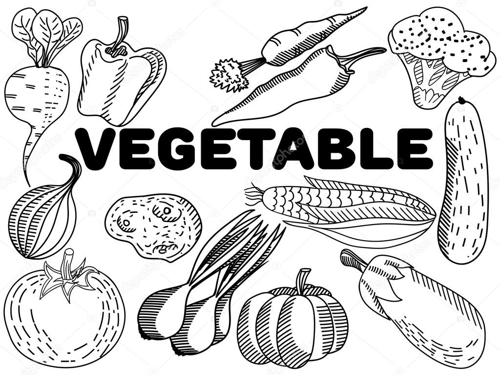 Vectores de vegetales para colorear para adultos — Vector de stock ...