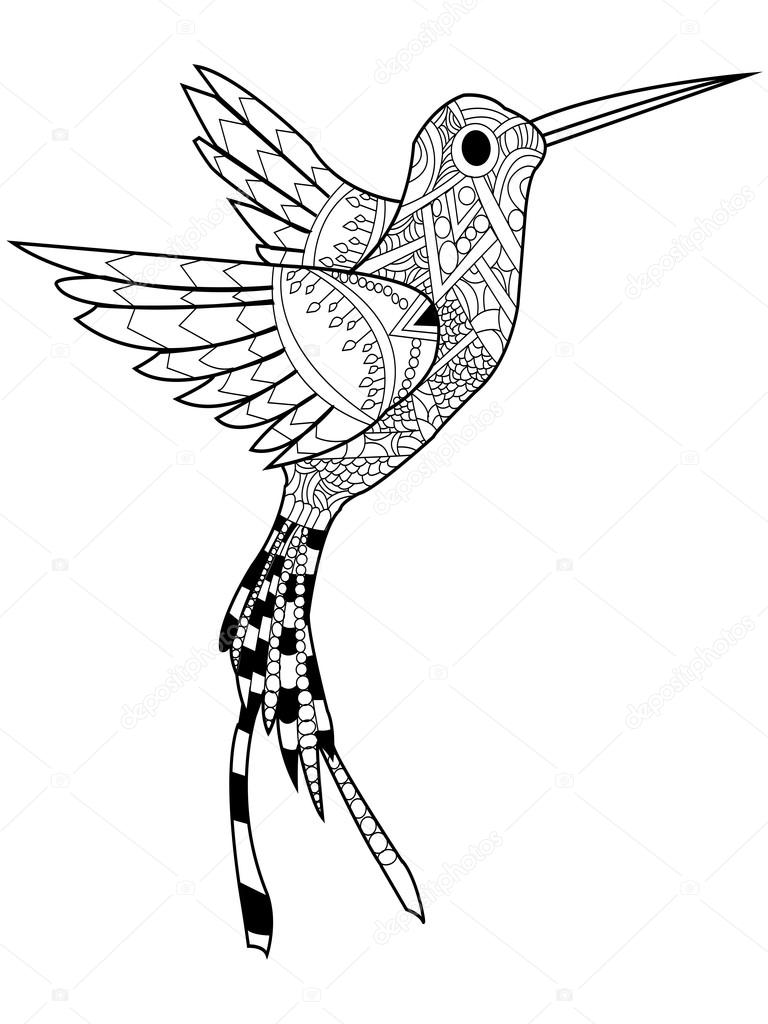 kolibrie kleuren raster voor volwassenen stockfoto