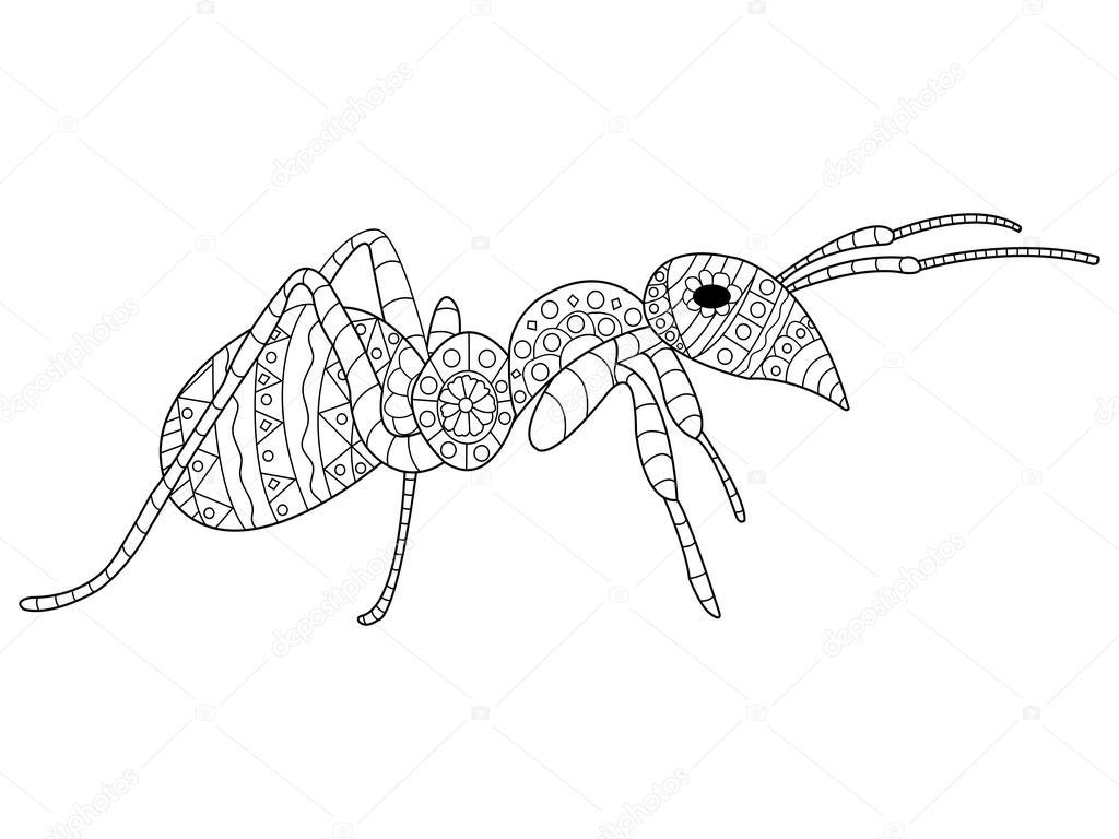 Vector de hormiga para colorear para adultos — Vector de stock ...