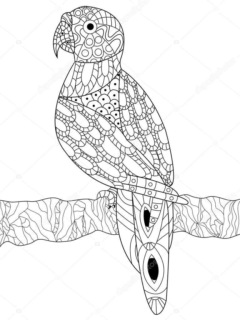 Coloriage Anti Stress Perroquet.Vecteur De Coloriage Perroquet Pour Adultes Image