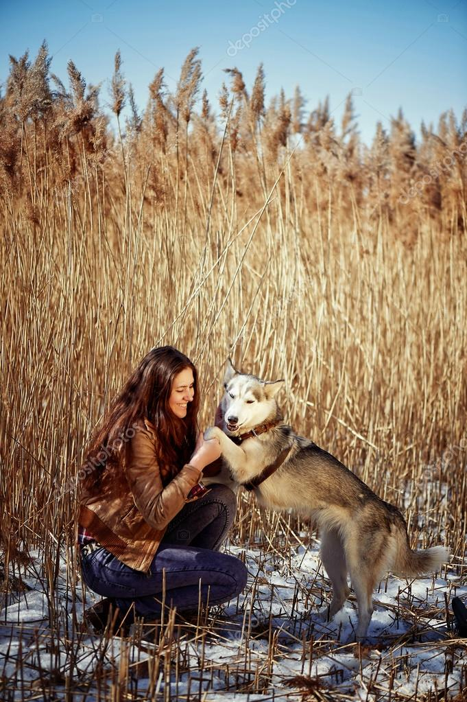 human hand holding husky puppys paw stock photo gf2002 mail ru