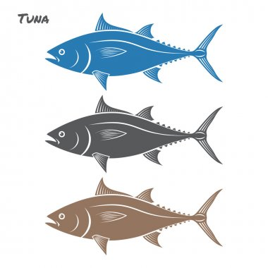 Tuna fish vector illustration on white background