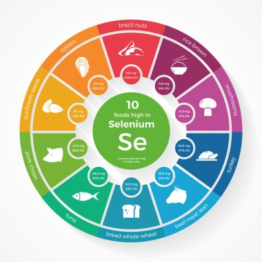 10 foods high in Selenium. Nutrition infographics.