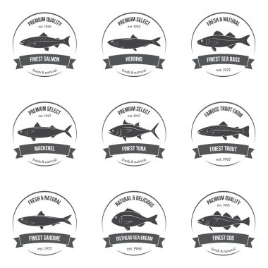 Vector fish silhouettes, labels, emblems. Salmon, herring, sea bass, mackerel, tuna, trout, sardine, sea bream, cod. Set of templates for stores, markets, food packaging.