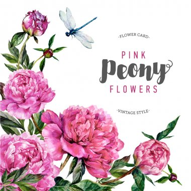 Vintage peony flower background