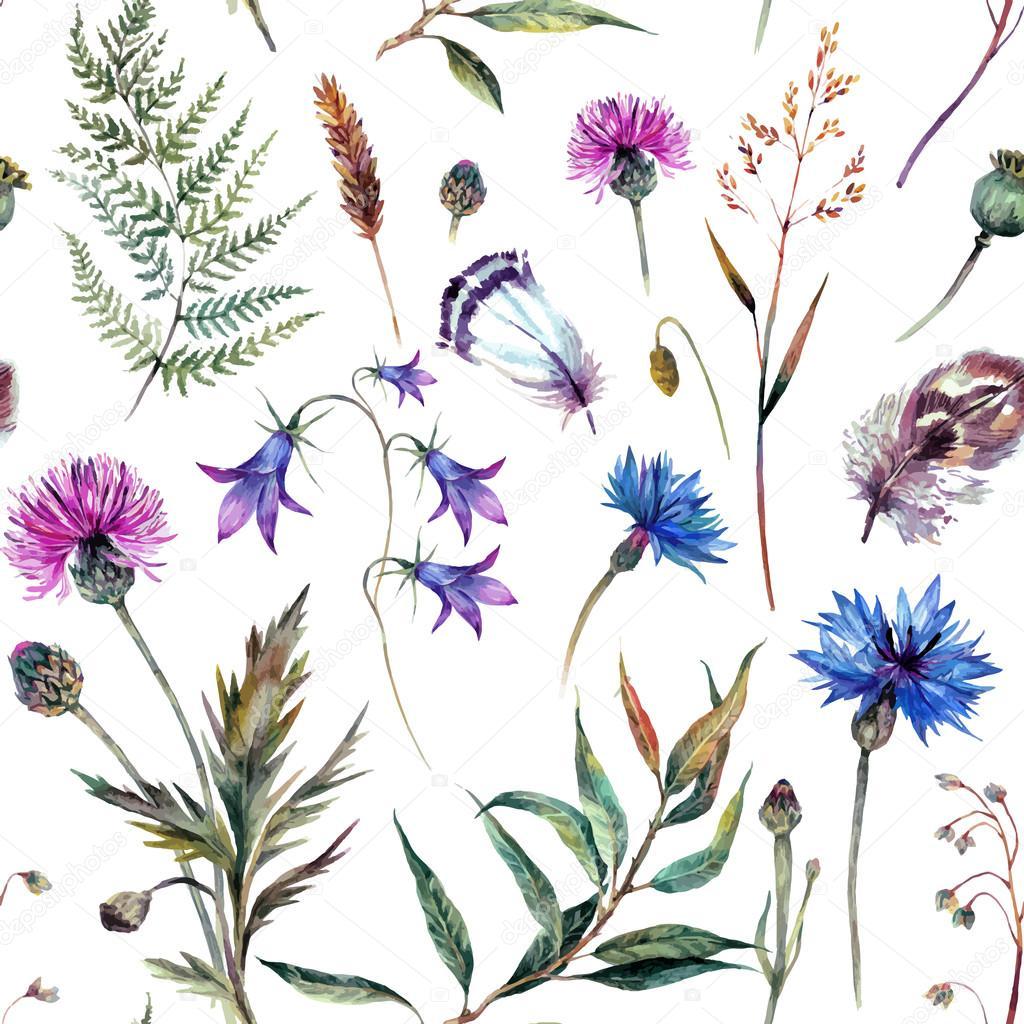 Фото и акварель полевые цветы