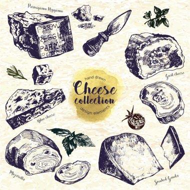 Hand Drawn Cheese Set