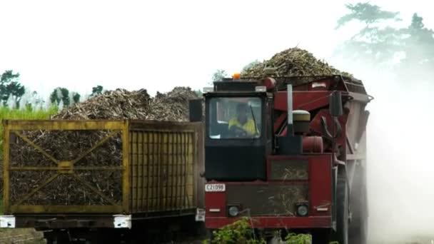 a cukornád teherautó egy teher-ból cukornád
