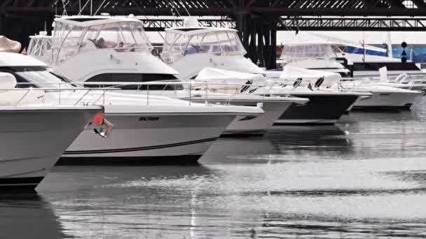 SYDNEY, AUSTRALIA - SEPT, 8, 2013: shot of luxury boats at a marina in darling harbour, sydney