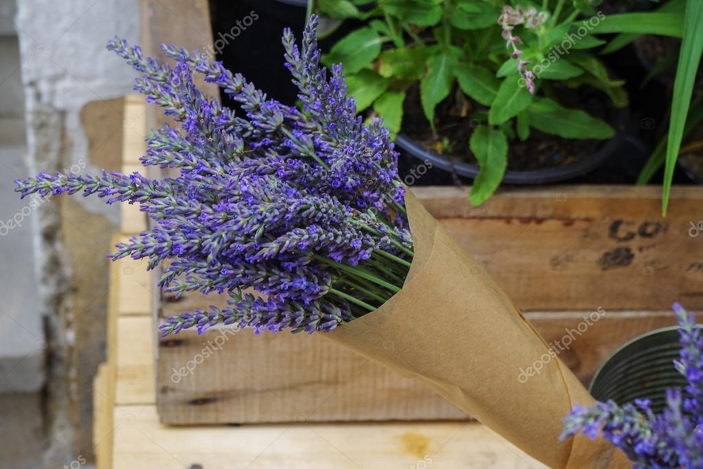 Bunch of lavender in craft paper.