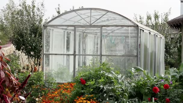 View of the inner garden. With no people. Spacious and bright greenhouse.