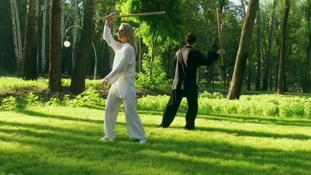 Qigong  Exercise with a wooden stick  Man and woman practicing qigong  Slow  motion  HD