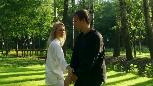 Training in a park. Workout. Woman and man practicing qigong. Slow motion. HD