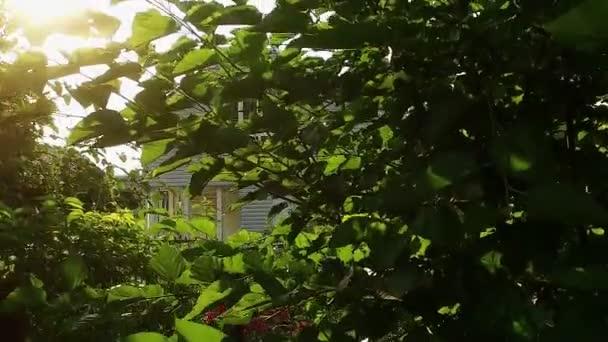 Panorama z dva příběh soukromého domu skrze větve stromu. Zpomalený pohyb. HD