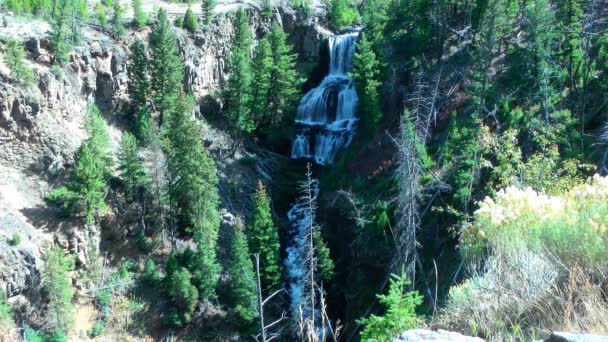Seamless loop - Beautiful large, 3-tiered waterfall and alpine river in Yellowstone National Park, Wyoming, USA.