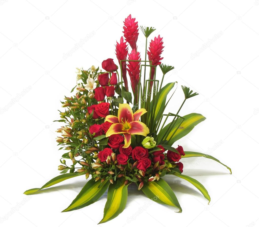 arreglo floral con rosas rojas y hojas grandes verdes sobre fondo blanco foto de alejomiranda - Fotos De Rosas Rojas Grandes
