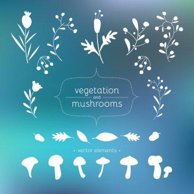 Set of floral elements for design and illustration