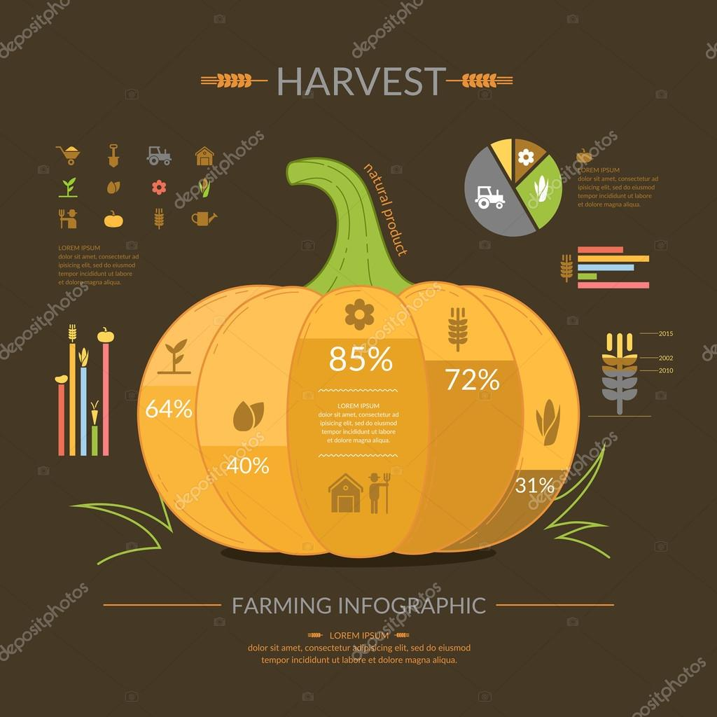 Harvest. Farming infographics Icons