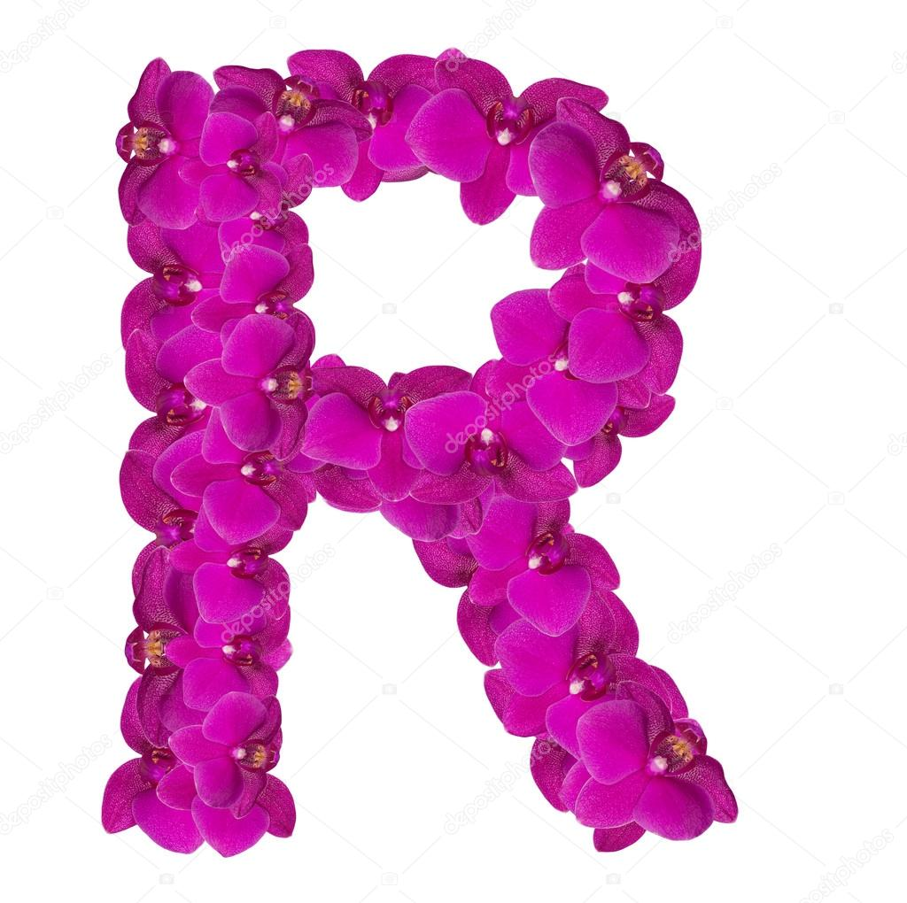 Letters made of pink flowers r letter flower alphabet stock letters made of pink flowers r letter flower alphabet stock photo altavistaventures Gallery