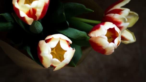 Květy na černém pozadí tulipány