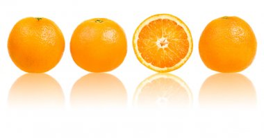 Orange slice composition set in line isolated on white stock vector