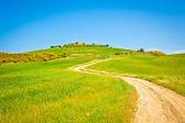 Fotografie Toskánsko pšeničné pole hill v slunečný den