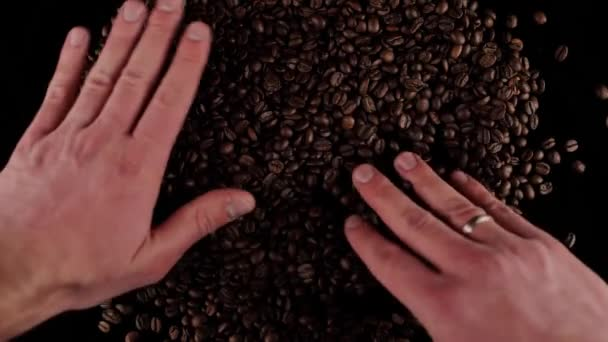 male hands are sorting grains of fresh roasted coffee