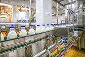 Produkce mléka v továrně