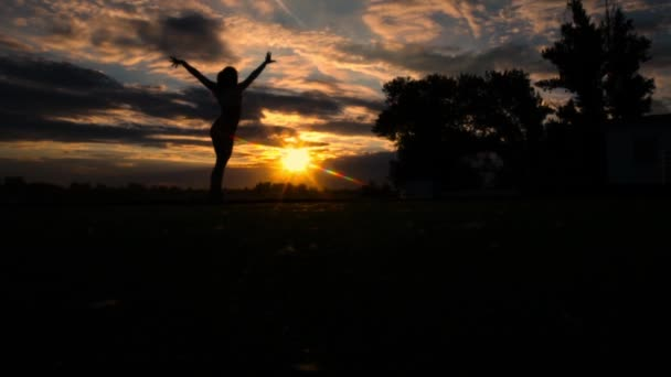 Woman raising arms to sky on beach during sunset, slow motion