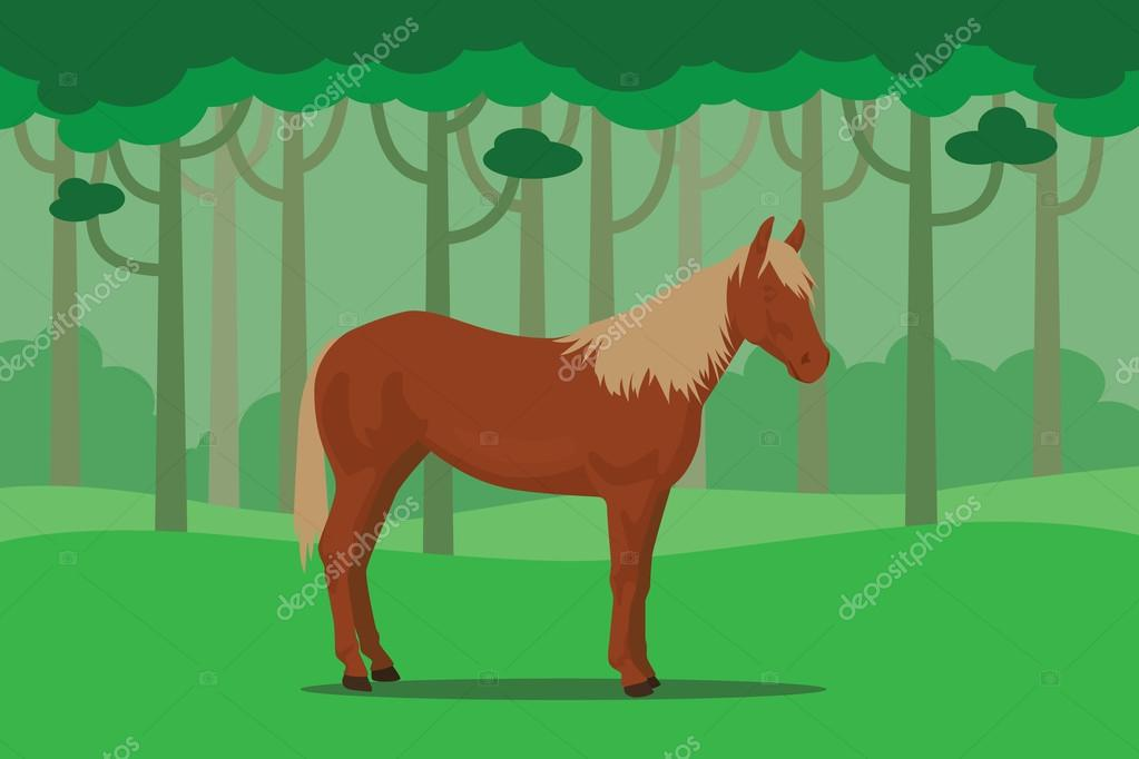 wild horse in jungle alone with tree forest as background