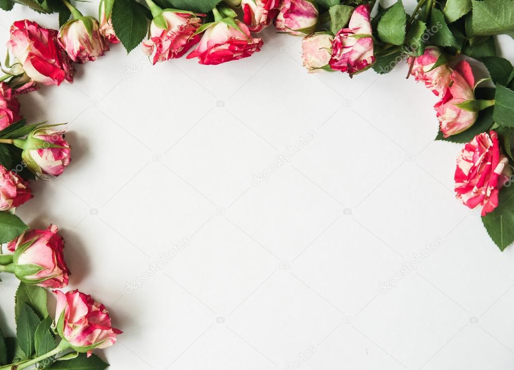 Фон белый с розами