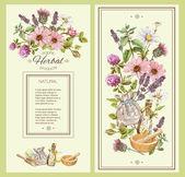 Fotografie Herbal vintage banner