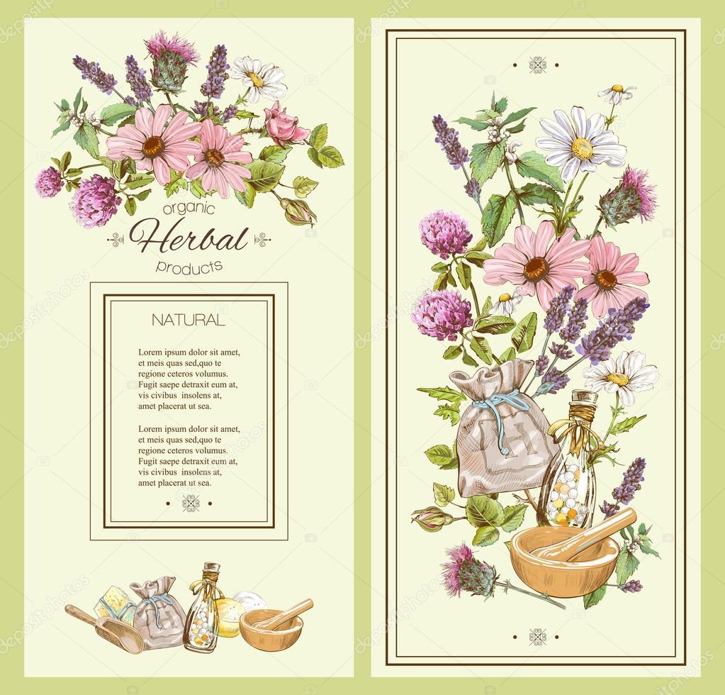 Herbal Vintage Banner Stock Vector C Purplebird18 107386010