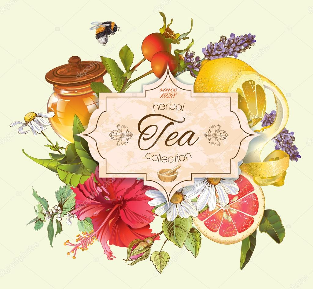 Vector vintage herbal tea banner
