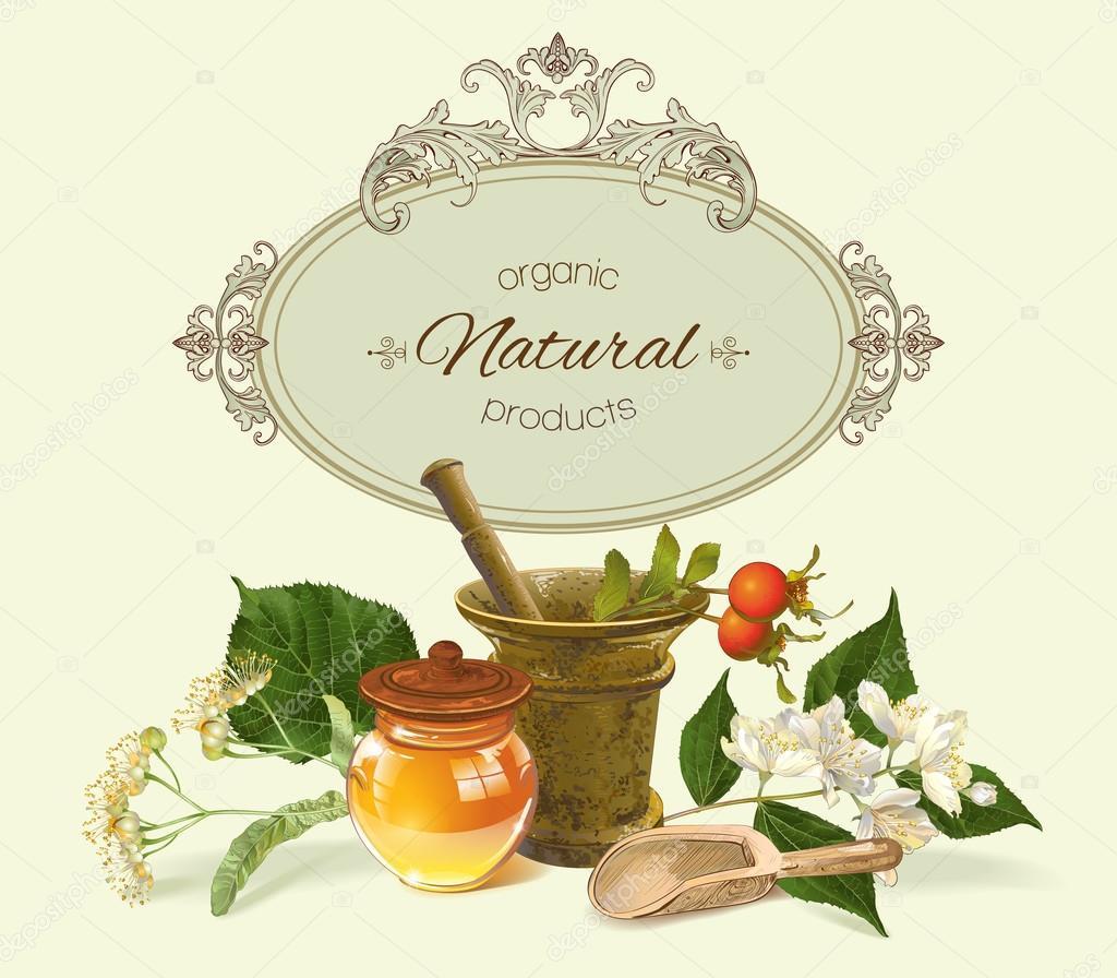 Vector herbal banner