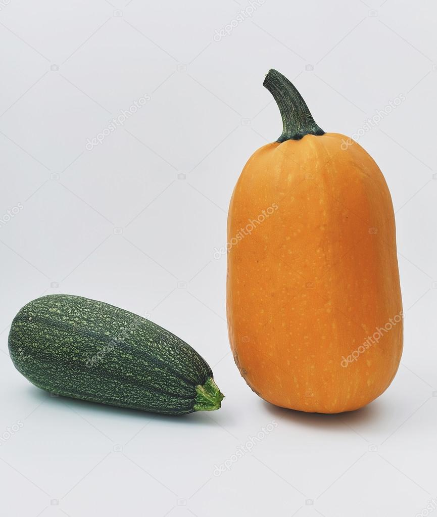 Why is a pumpkin useful? 97