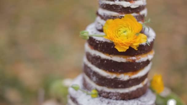 Oko Wald Nackt Hochzeitstorte Stockvideo C Tkalhous 99314432