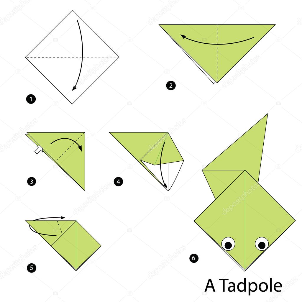 Step by step instructions how to make origami Vector Image | 1024x1024