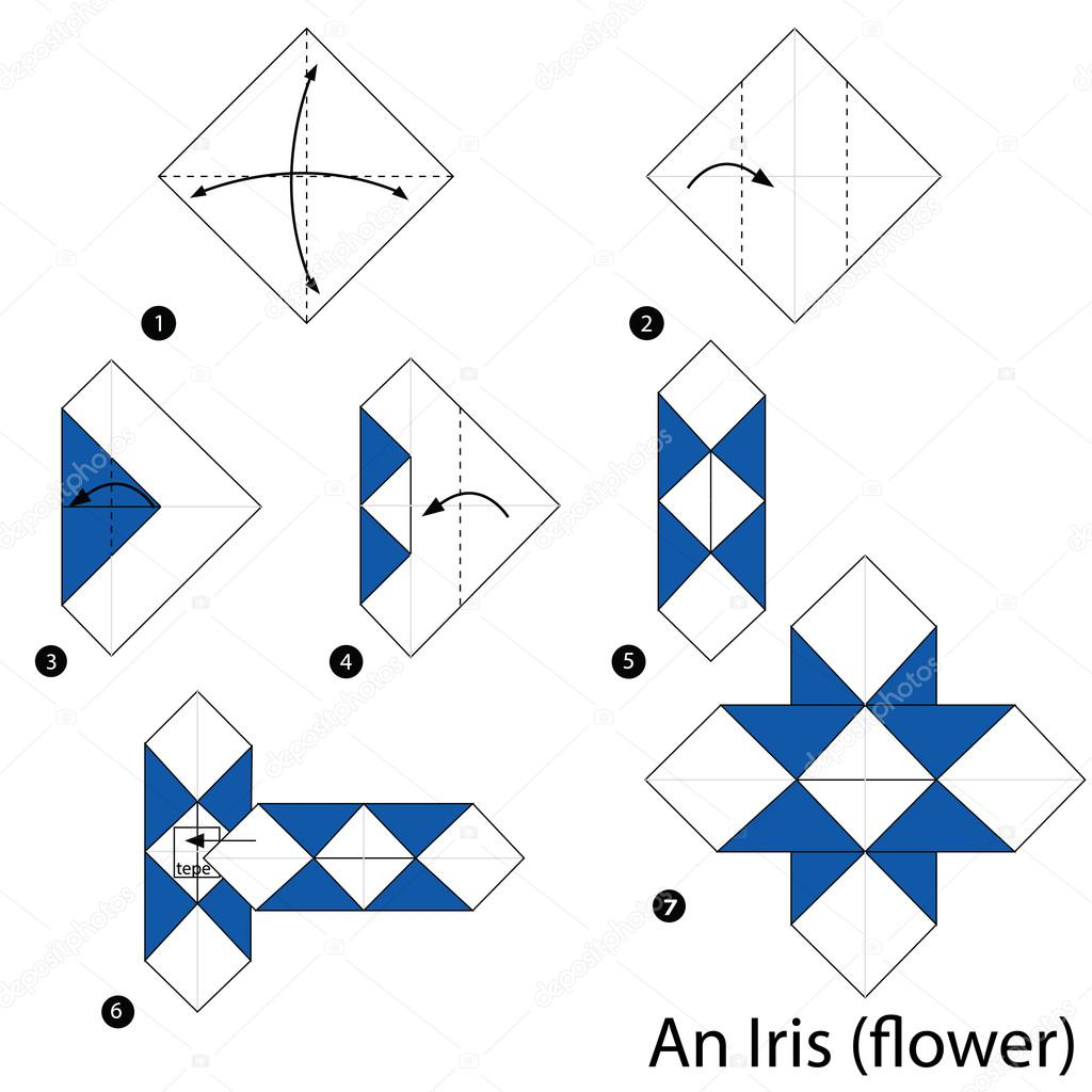 Step By Step Instructions How To Make Origami An Iris Stock