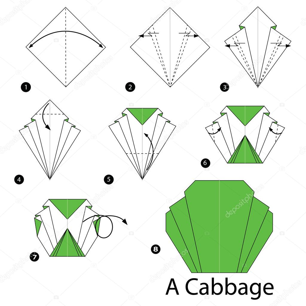 step by step instructions how to make origami A Cabbage.