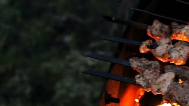 maso a houby pečené na ohni špejle