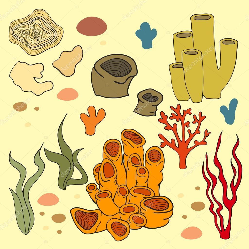 Alghe E Coralli Di Vettore Isolato Vettoriali Stock Lesia