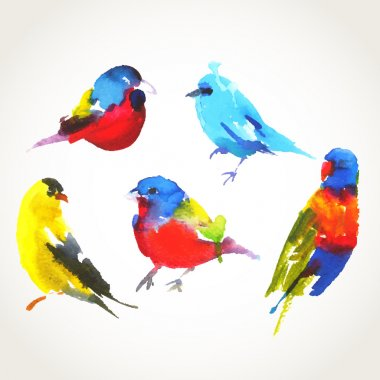 Set of watercolor drawing birds