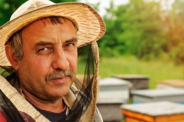 Portrait of a beekeeper on an apiary. Apiary