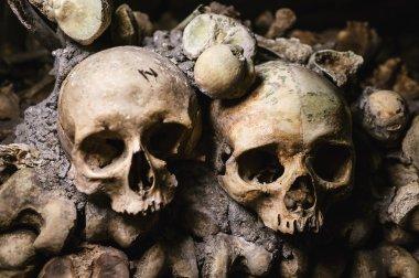 Human skulls on wall